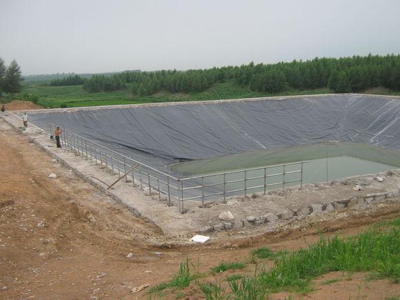 人工鱼池工程案例